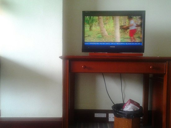 Soechi International Hotel: Tv yg kecil