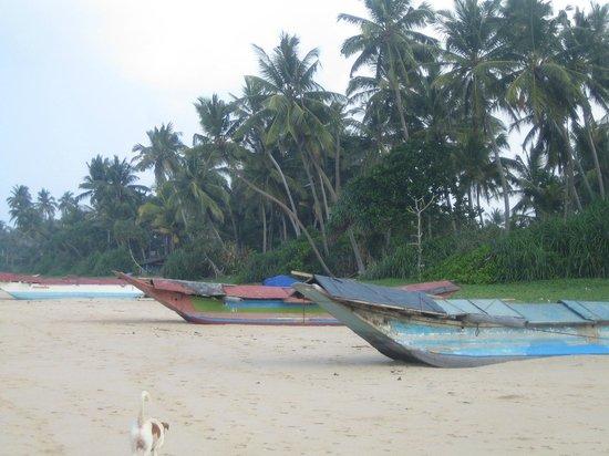 Max Wadiya: the beach