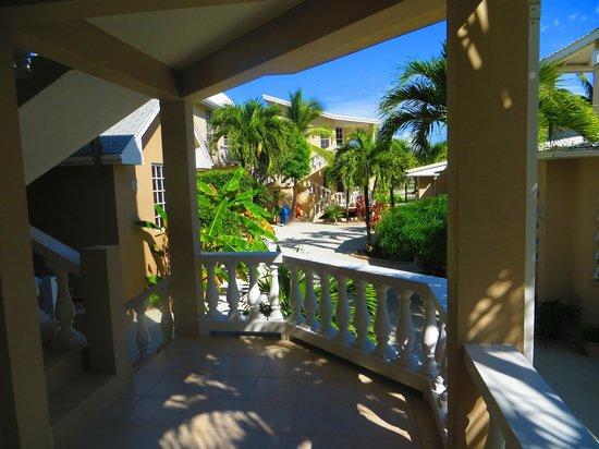 Iguana Reef Inn: The inn grounds