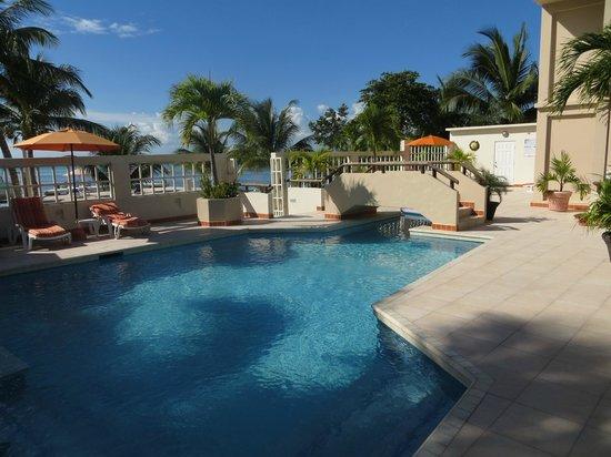 Iguana Reef Inn: The pool