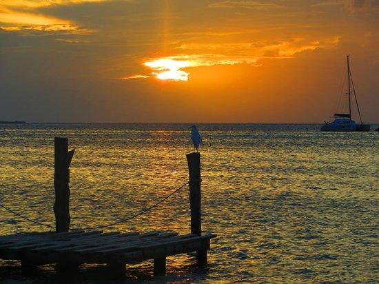 Iguana Reef Inn: Sunset from sitting area