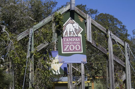 Tampa's Lowry Park Zoo: Entrance