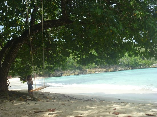Winnifred Beach : sweet spot
