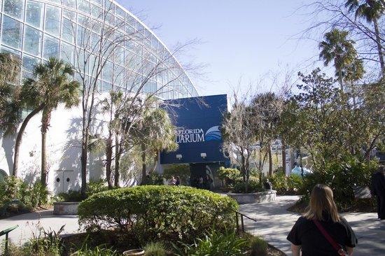 The Florida Aquarium: Enterance