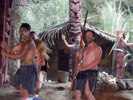 Mitai Maori Village: the performance by the warriors