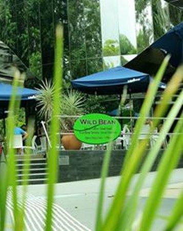 Wild Bean Cafe: next to red arrow walk