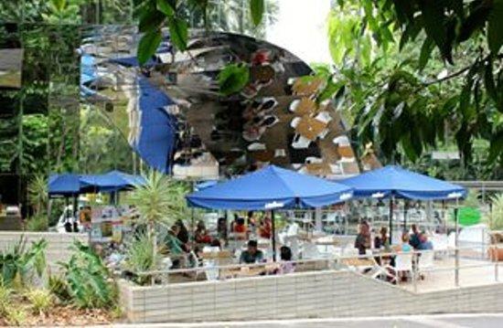 Wild Bean Cafe: great spot