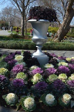 Arboretum et jardin botanique de Dallas : The Gardens