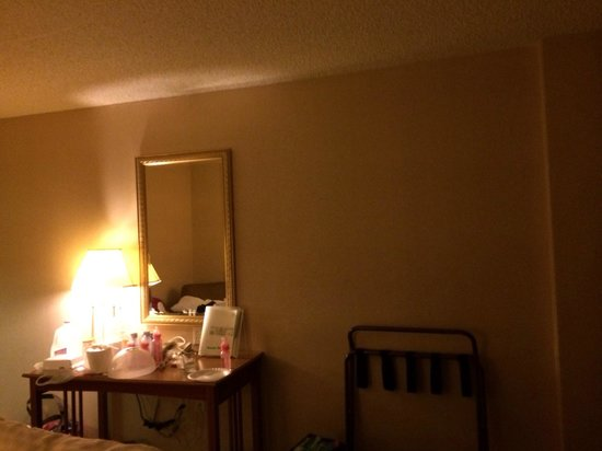 Holiday Inn Anaheim-Resort Area: room