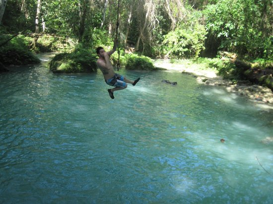 Real Tours Jamaica - Day Tours: Just hanging on