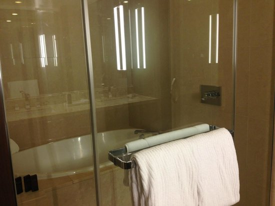 ARIA Resort & Casino: Cool shower and tub combo