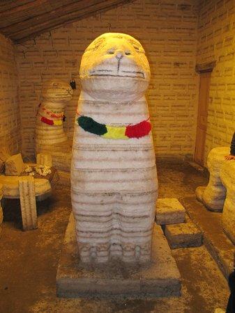 Salar de Uyuni: Museo de Sal