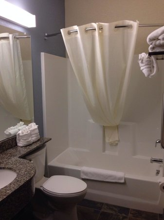 Microtel Inn & Suites by Wyndham Wilkes Barre: Bathroom is very clean. Sufficient space.