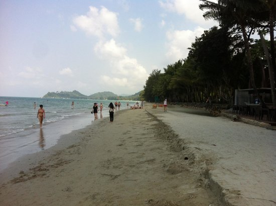 Khlong Prao Beach: Tropicana resort  beach