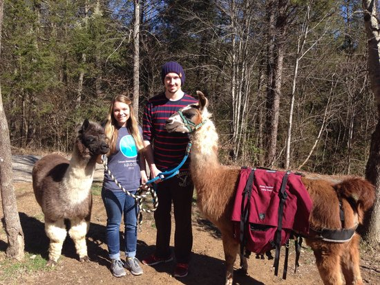 Smoky Mountain Llama Treks - Day Tours: :) Making friends