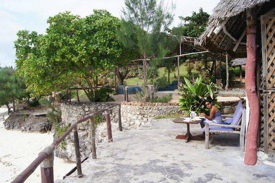 Sazani Beach Lodge: view up from the beach