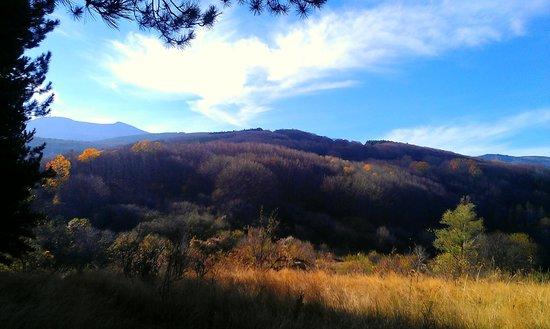 Vitosha Mountain: Bistritsa area