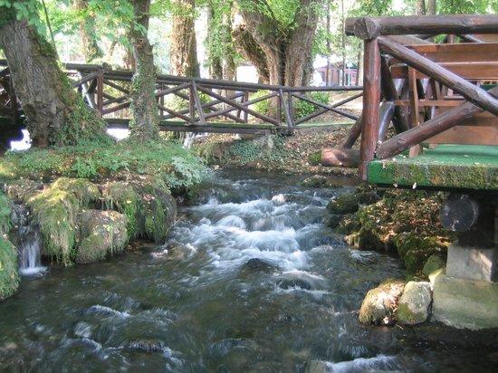 Villa Drina: Открытые столики ресторана отеля находятся рядом с рекой