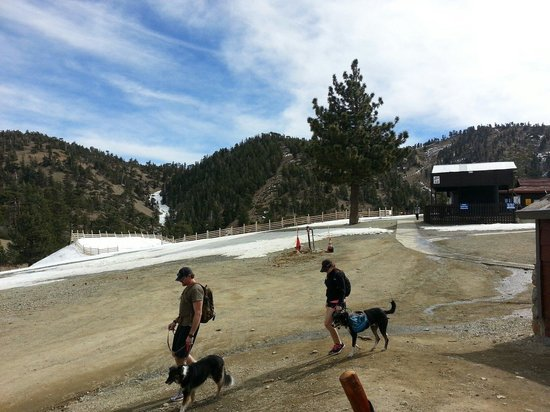 Mt. Baldy Ski Area: At the top.