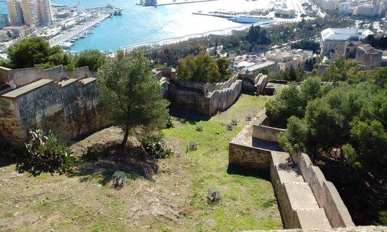 Castillo de Gibralfaro : A view