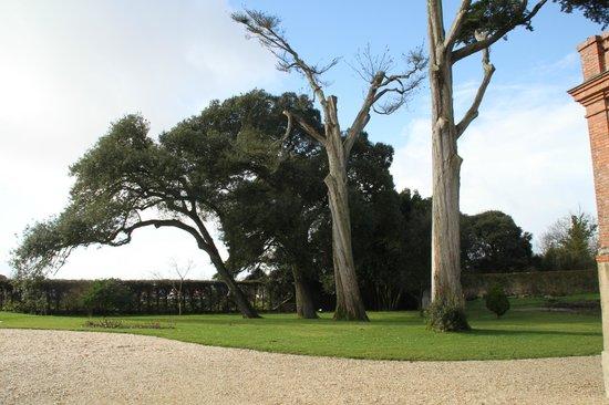 Château de la Gressiere : parc arboré