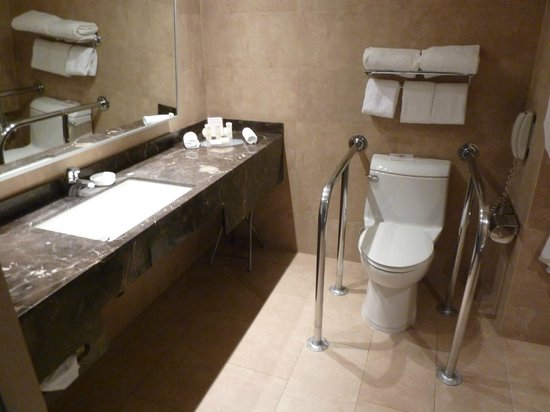 Crowne Plaza Santiago: Disabled access room bathroom