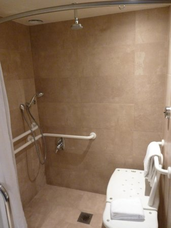 Crowne Plaza Hotel Santiago: Disabled access room bathroom
