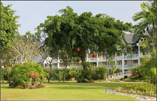 Angsana Laguna Phuket : Banyan Tree