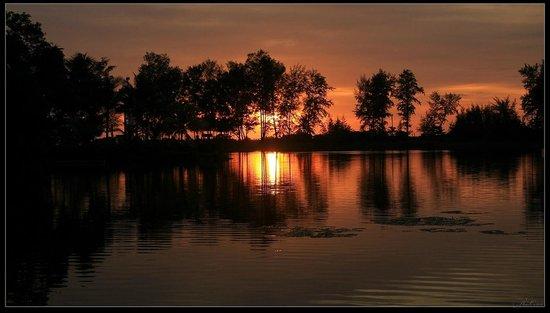 Angsana Laguna Phuket : Sunset. Laguna