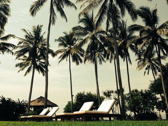 Alila Manggis: pool view