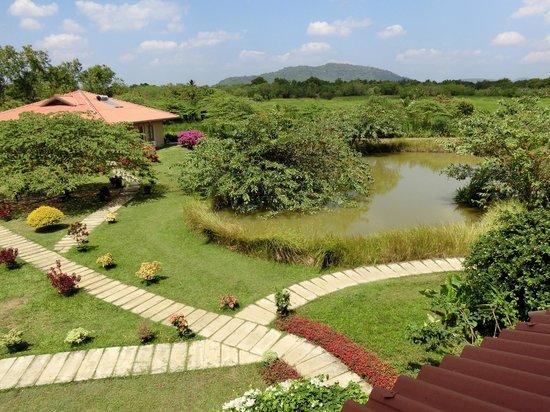 Hibiscus Garden Hotel: 6