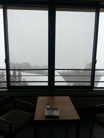 Hyatt Regency Hakone Resort and Spa : View from room