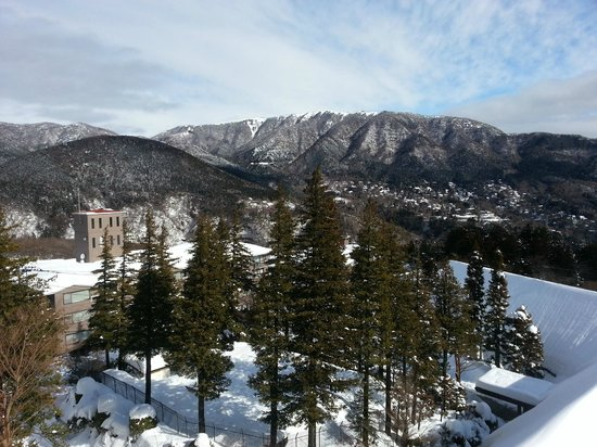 Hyatt Regency Hakone Resort and Spa: View from room on a sunny day