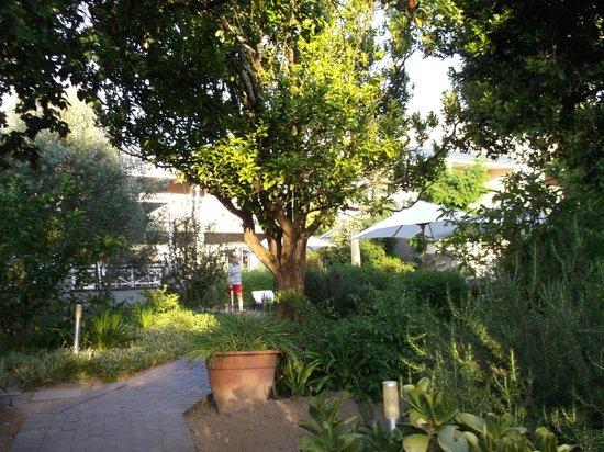 Plumwood Inn: route to main swimming pool