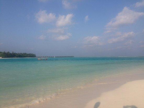 Happy Life Maldives Lodge : Spiaggia