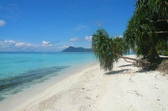 Pom Pom Island Resort & Spa : Beach views