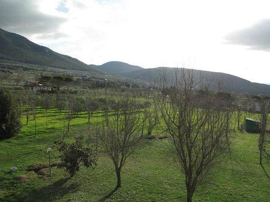 Buffet della colazione foto di agriturismo il giardino - Il giardino dei ciliegi assisi ...