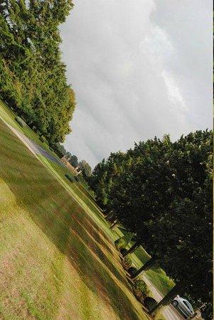 Le Chateau de Sully: La vue !