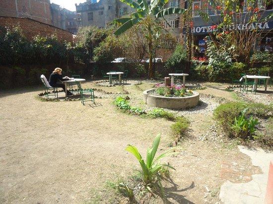 Hotel Discovery Inn: sunny garden