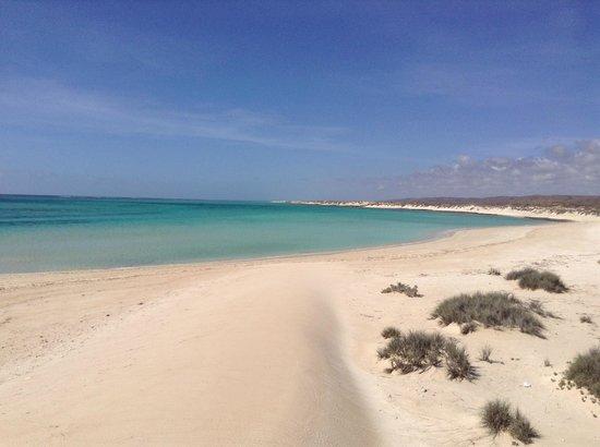 Sea Breeze Resort: Torquoise beach