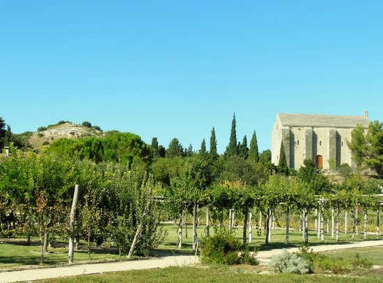 Bassin moderne photo de jardin romain caumont sur for Caumont sur durance jardin romain