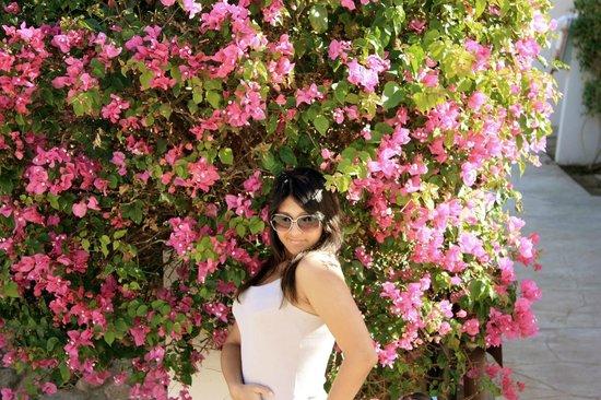 Le Meridien Dahab Resort: если вы будете жить в обычных сьютах вот такая красота будет ждать вас на выходе
