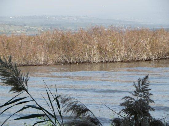 Pina Balev: Lake Galilee/Lake Kinneret