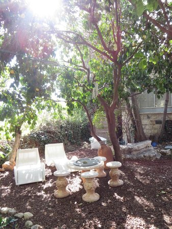 Pina Balev: Hotel Garden