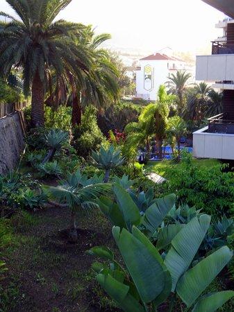 Hotel Puerto de la Cruz: Gartenanlage zwische 2 Pools