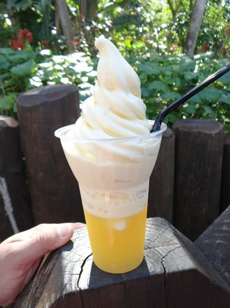 Aloha Isle at Magic Kingdom: Pineapple Dole Whip