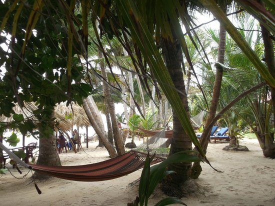 Little Corn Beach and Bungalow: delightful grounds