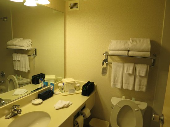 Comfort Inn by the Bay: The bathroom