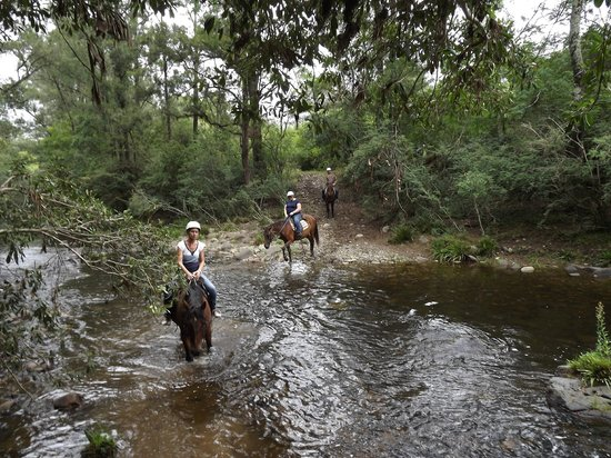 Riverwood Downs Mountain Valley Resort: Horseriding