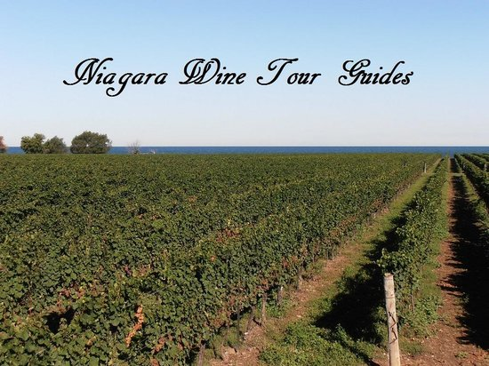 ‪Niagara Wine Tour Guides‬